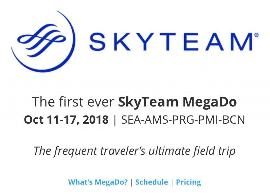 スカイチーム(SkyTeam)と提携をして視察旅行を主催する「MegaDo」とは?