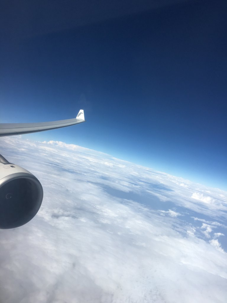 Business Class Review : MS912(CAI – DXB)