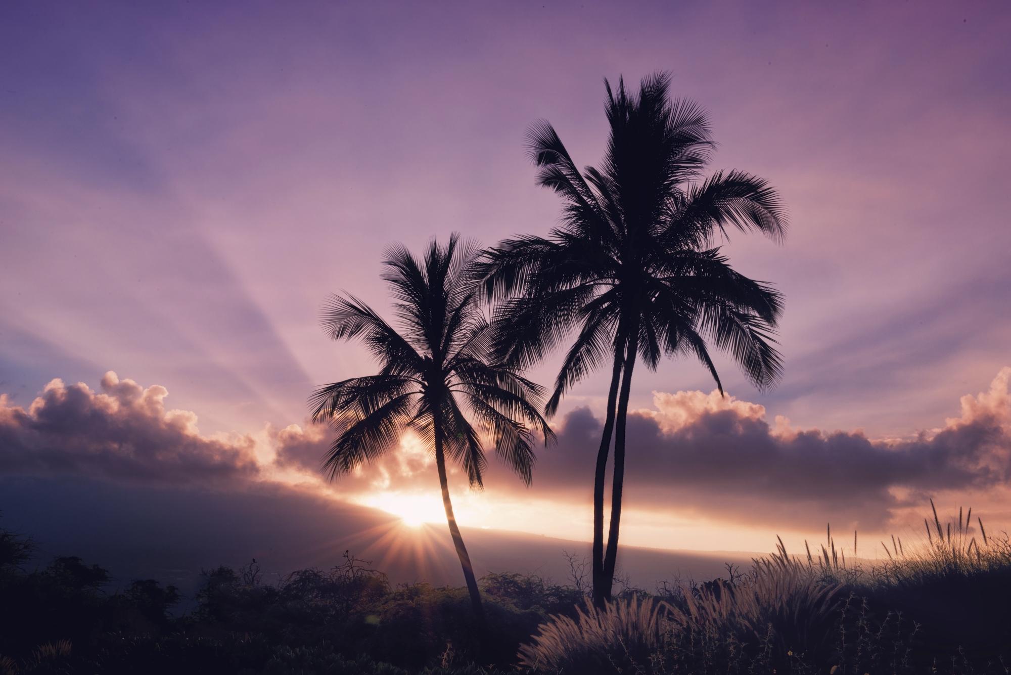 ハワイとヨーロッパへ家族4人、お得にビジネスクラスを予約するセミナーのご案内
