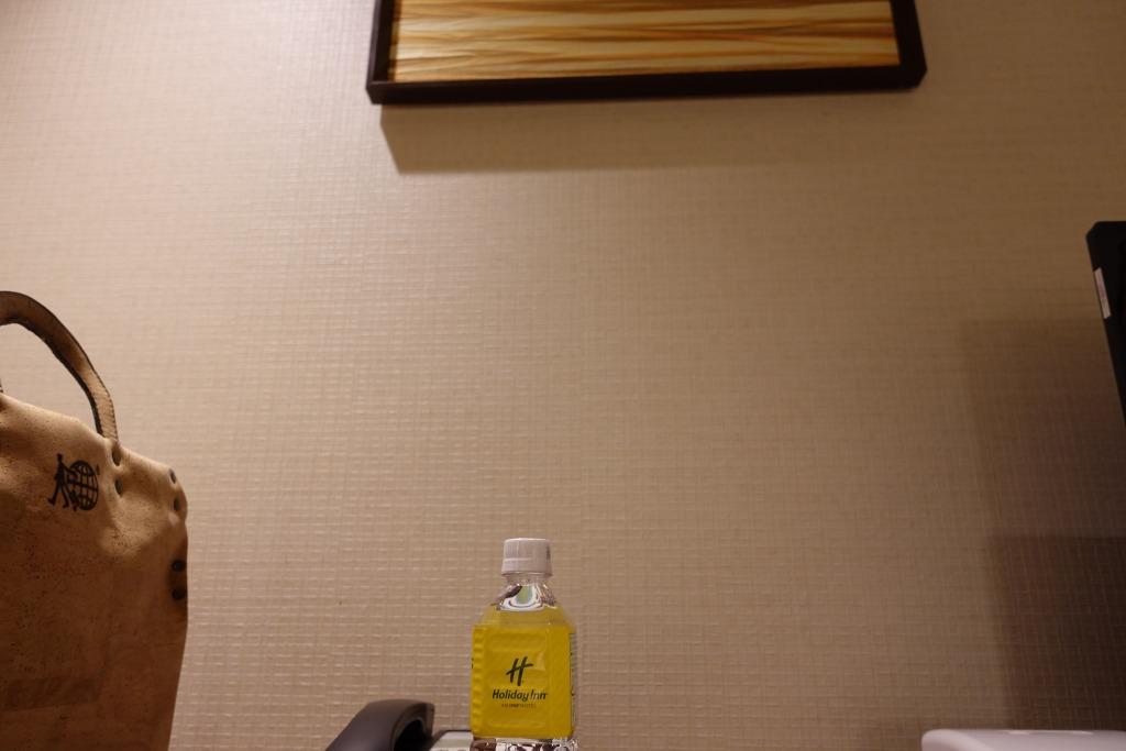 Hotel Review : ANA ホリデイ・イン 金沢スカイ(ANA Holiday Inn Kanazawa SKY)
